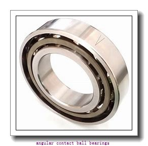 110 mm x 170 mm x 28 mm  110 mm x 170 mm x 28 mm  SNFA HX110 /S 7CE1 angular contact ball bearings