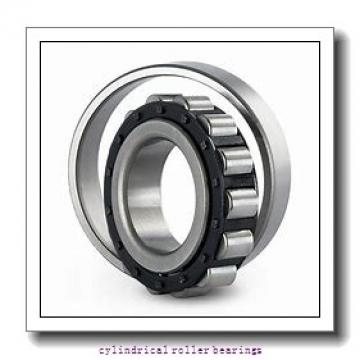 60 mm x 130 mm x 31 mm  60 mm x 130 mm x 31 mm  SIGMA NUP 312 cylindrical roller bearings