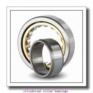 Toyana NNCL4860 V cylindrical roller bearings