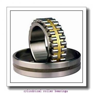25 mm x 80 mm x 21 mm  25 mm x 80 mm x 21 mm  Fersa NJ405F cylindrical roller bearings