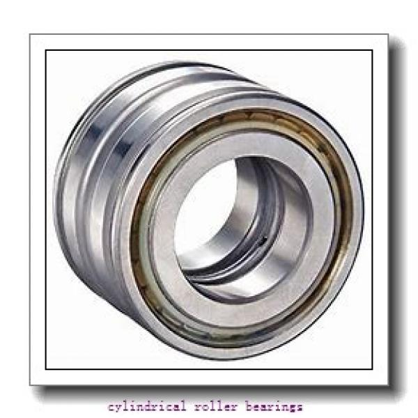 75 mm x 130 mm x 31 mm  75 mm x 130 mm x 31 mm  SIGMA NUP 2215 cylindrical roller bearings #2 image